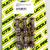 Drevbult i titan 30 mm 6-pack